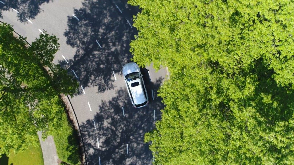 car in the streets surrounded by forest